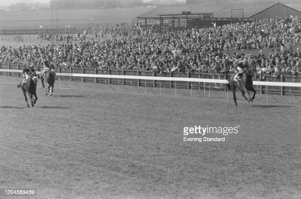 View of the final stages of the 1971 2000 Guineas Stakes with on right eventual winner Brigadier Gerard ridden by Joe Mercer ahead of Mill Reef to...