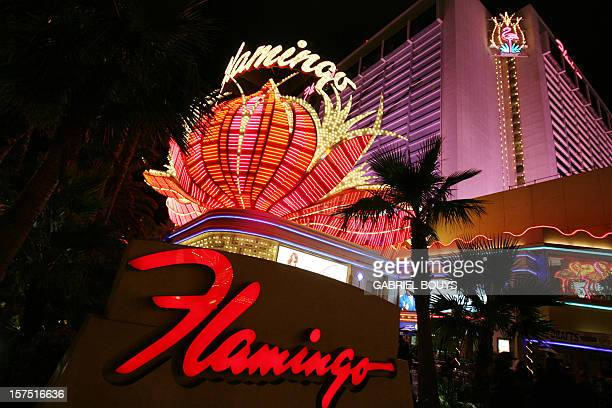 View of the Flamingo hotel shines up the night sky in Las Vegas, Nevada 12 November 2006.