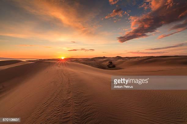 View of the Gobi desert at sunset