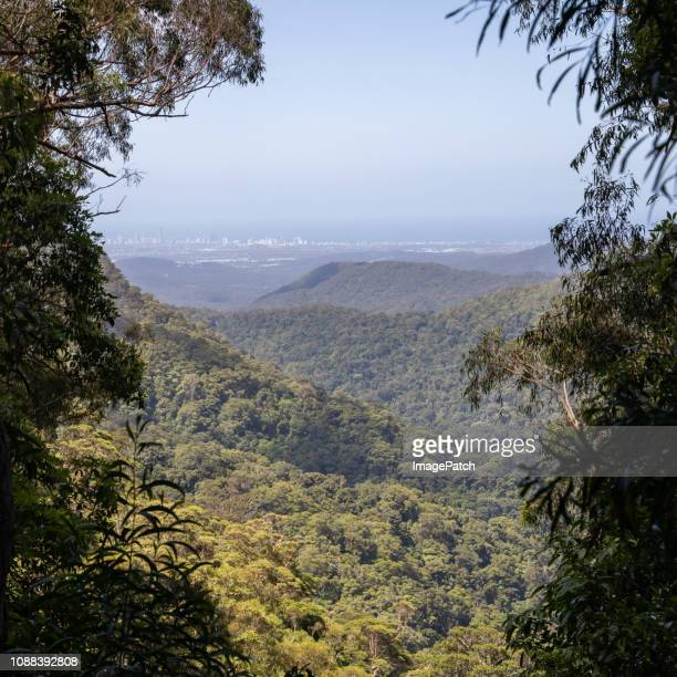 view of the gold coast skyline from high up in springbrook national park - non urban scene stock pictures, royalty-free photos & images