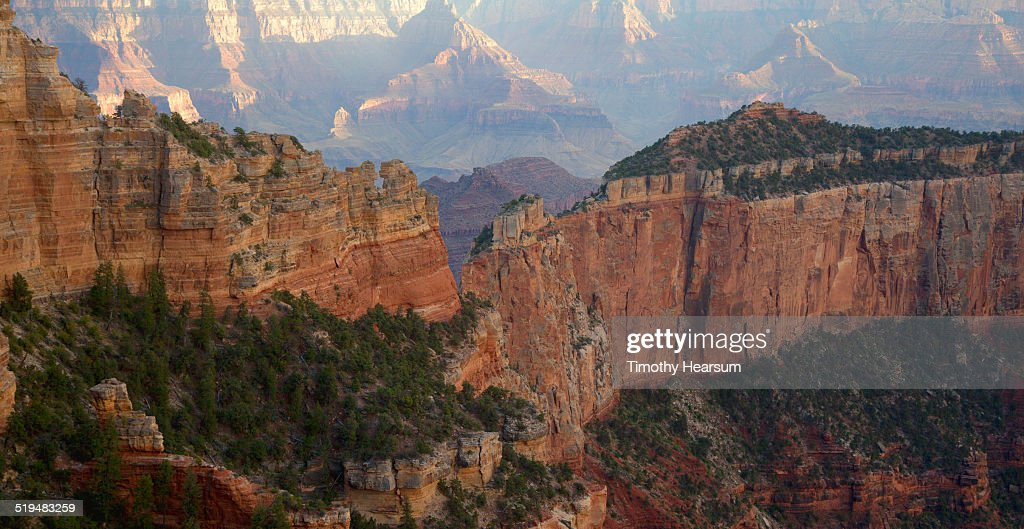 View of the Grand Canyon from the North Rim : Stock Photo