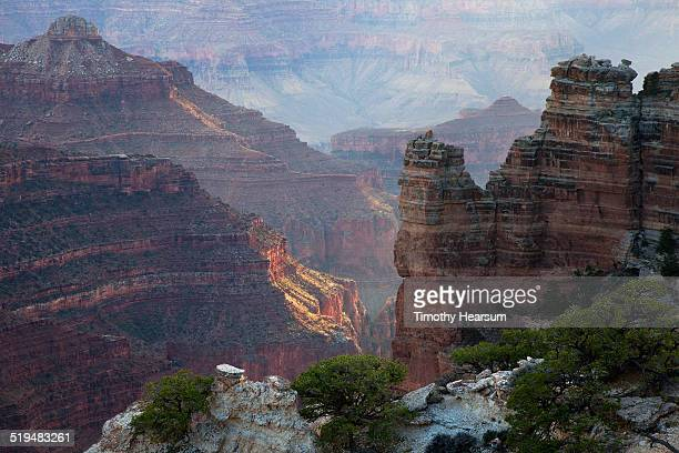 view of the grand canyon from the north rim - timothy hearsum stock pictures, royalty-free photos & images