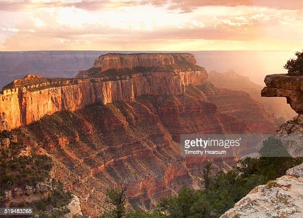 view of the grand canyon from the north rim - timothy hearsum stock-fotos und bilder