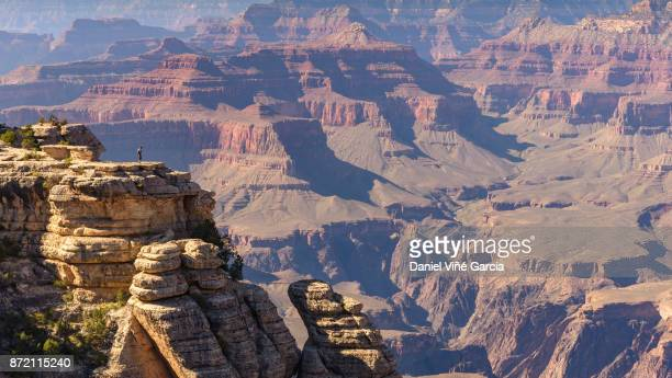 View of the Grand Canyons