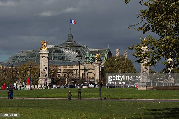 View of the Grand Palais in Paris on November 1 2012 AFP PHOTO / JOEL SAGET