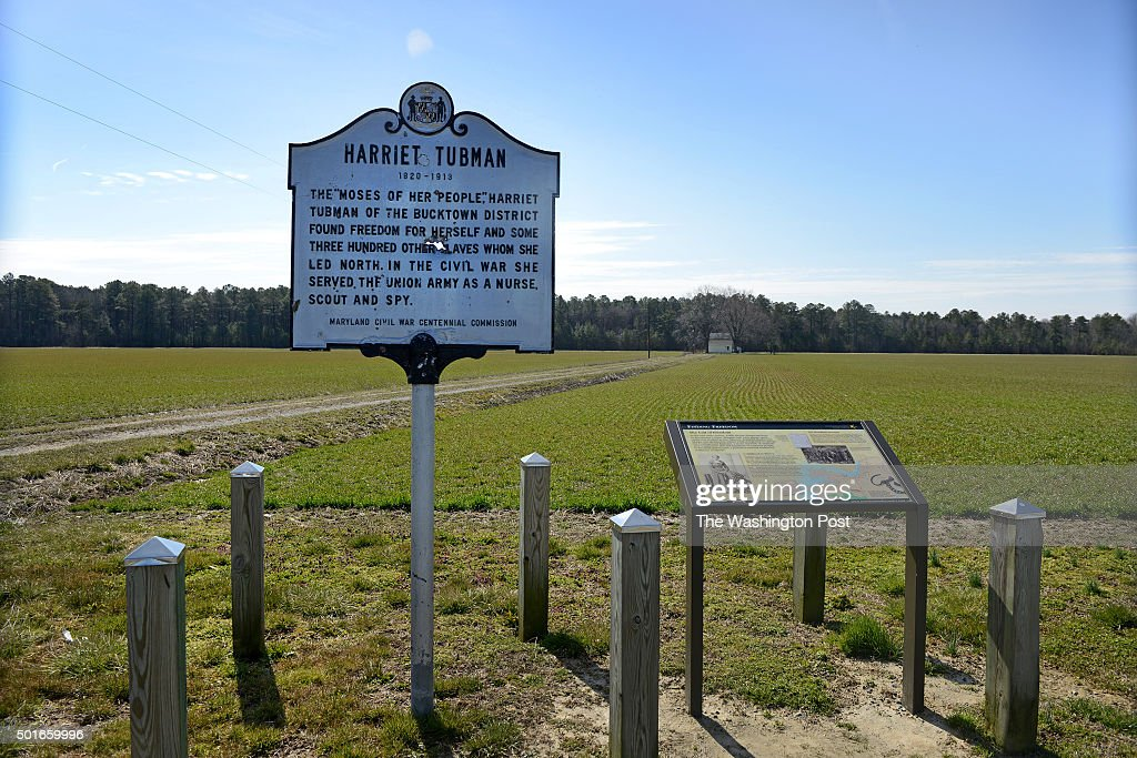 View of the Harriet Tubman Historical Marker at Brodess Farm in Cambridge, MD on March 5, 2013. Though the farm has been historically recognized as Harriet Tubman's birthplace, there is no conclusive evidence. However, Tubman, her siblings and her mother were moved here and worked at the Edward Brodess Farm as well as other farms near by. This farm is privately owned. There are plans for a national historic trail and a state park nearby honoring Tubman and the Underground Railroad. The groundbreaking takes place this weekend on the 100 anniversary of Tubman's death.