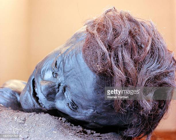 View of the head of Grauballe Man Discovered in 1952 he was violently killed with a blow to his temple which fractured his skull and a cut to the...