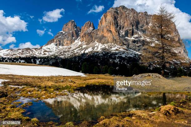 view of the high mountains of grohmannspitze with pass sella, dolomites, european alps, italy - pavliha stock photos and pictures