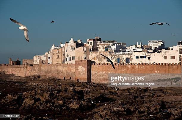 View of the historic town of Essaouira. Unesco World Heritage Site, Morocco. 2013