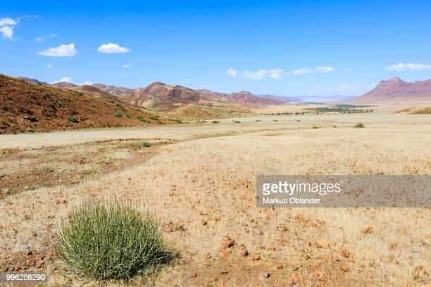 View of the Hoanib Dry River, Kunene region, Namibia