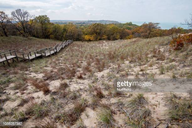 View of the Indiana Sand Dunes State Park in Chesterton, IN, United States on October 29, 2018.
