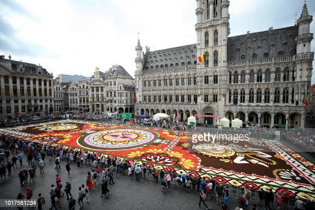 annual flower carpet in brussels ストックフォトと画像 getty images