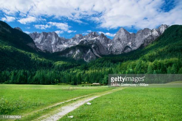 view of the julian alps - slowenien stock-fotos und bilder