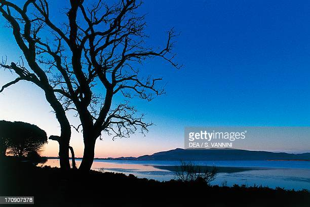 View of the lagoon from Patanella forest near Albinia, Orbetello Lagoon Nature Reserve, Tuscany, Italy.