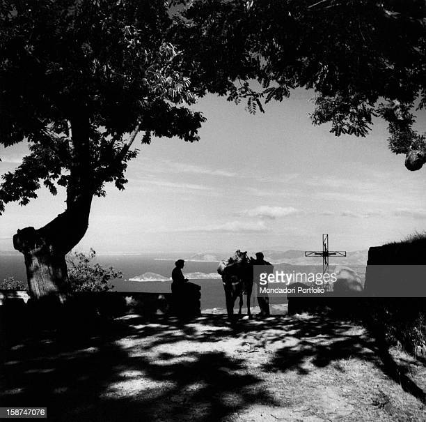 View of the landscape from the village of Lower Marciana in the Elba island Marciana August 1956