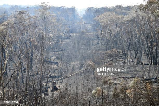 A view of the landscape with burnt trees after a bushfire in Mount Weison in Blue Mountains some 120 kilometres northwest of Sydney on December 18...
