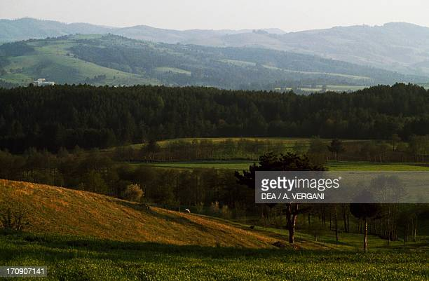 View of the Lesser Sila plateau Sila National Park Calabria Italy