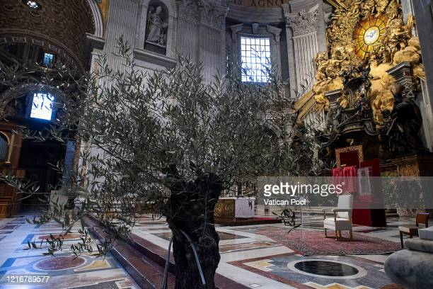 A view of the main altar of St Peter's Basilica during the Palm Sunday vigil on April 04 2020 in Vatican City Vatican Pope Francis will celebrate the...