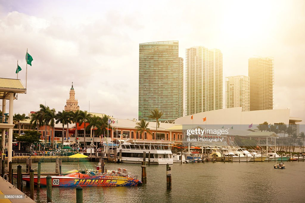 View Of The Marina From Bayside Marketplace A Festival