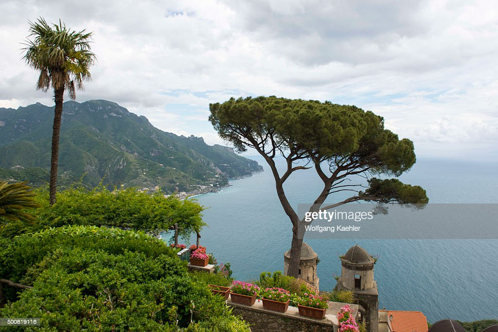 View Of The Mediterranean Sea And Umbrella Pine Tree From The Garden Of  Villa Rufolo In