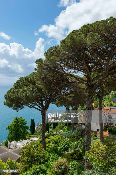 View of the Mediterranean Sea and Umbrella pine trees from the garden of Villa Rufolo in Ravello on the Amalfi Coast Italy