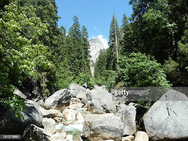 View of the Merced river in Yosemite National Park taken on June 25 during the time when Hantavirus victims contracted the disease while staying in...
