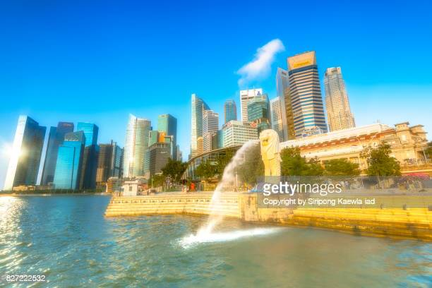 view of the merlion statue is spouting water during sunrise with the high rise buildings around the marina bay in background. - copyright by siripong kaewla iad ストックフォトと画像
