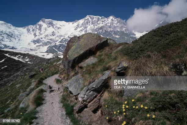 View of the Monte Rosa east wall from the Belvedere glacier moraine with the Punta GnifettiSignalkuppe the Punta Zumstein the Punta...