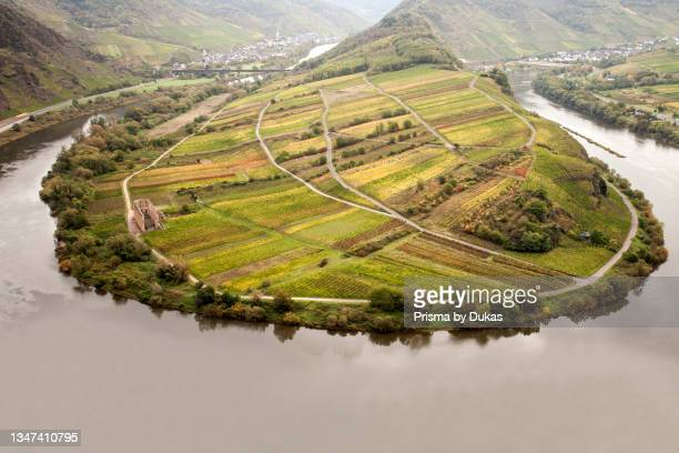 View of the Moselle loop, Bremm, Moselle valley, Rhineland-Palatinate, Germany, Europe.