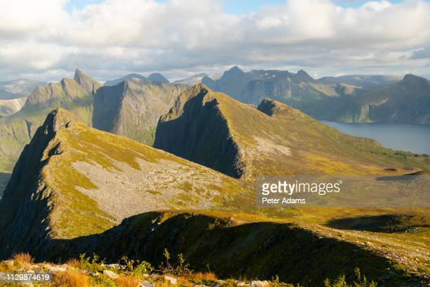view of the mountains on senja island, troms county, norway - peter adams stock pictures, royalty-free photos & images