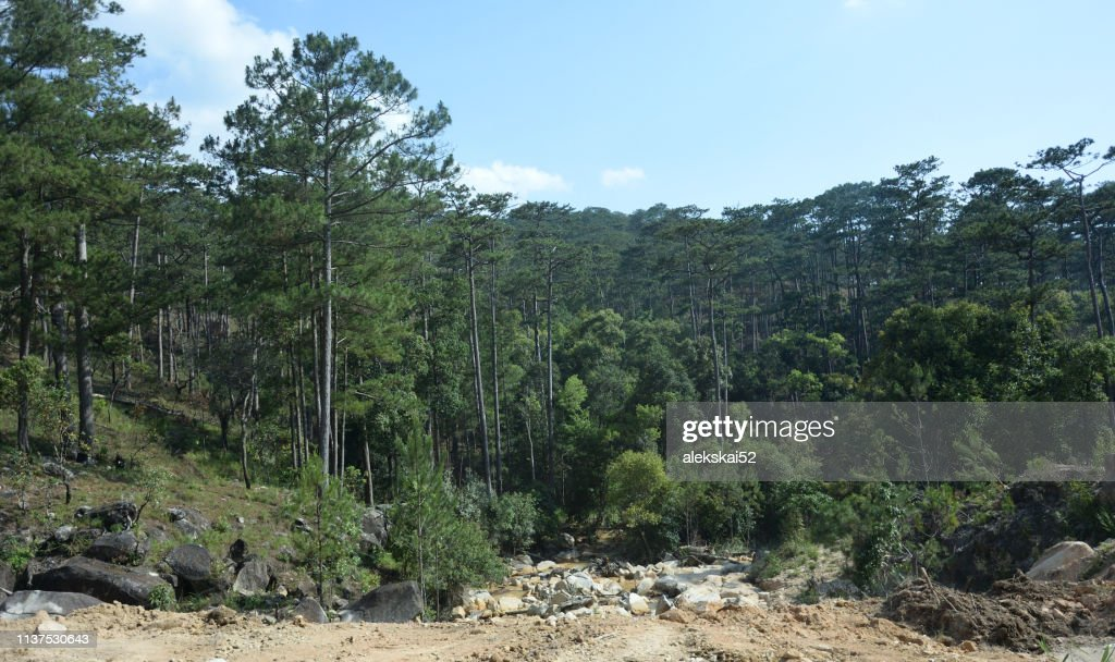 View of the mountainside. Vietnam Khanh Hoa District : Stock Photo