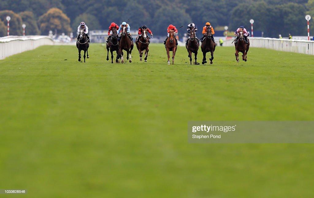 Doncaster Races : ニュース写真