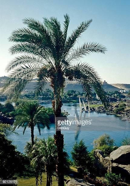 ナイル川の眺め、エジプトでアスワン - ナイル川 ストックフォトと画像