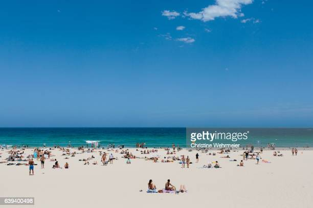 view of the ocean and sunbathers at bondi beach on summer day - christine wehrmeier stock photos and pictures