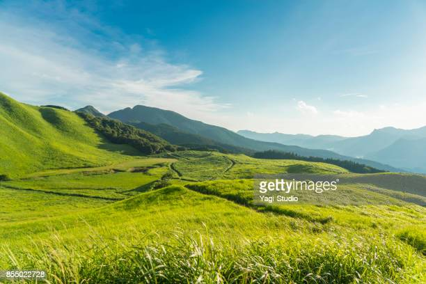 view of the plateau,soni kougen in japan - mountain range stock pictures, royalty-free photos & images