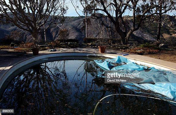 A view of the pool where eight people survived a wildfire the night before by staying in the water of the backyard swimming pool on Santa Margarita...