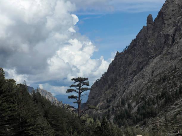 View of the Restonica Valley (Réserve Naturelle du Massif du Monte Ritondu), Corsica