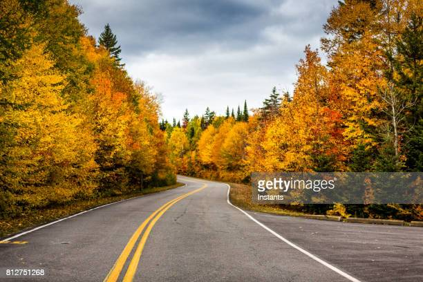 A view of the road in La Mauricie National Park situated in Canadian province of Québec.