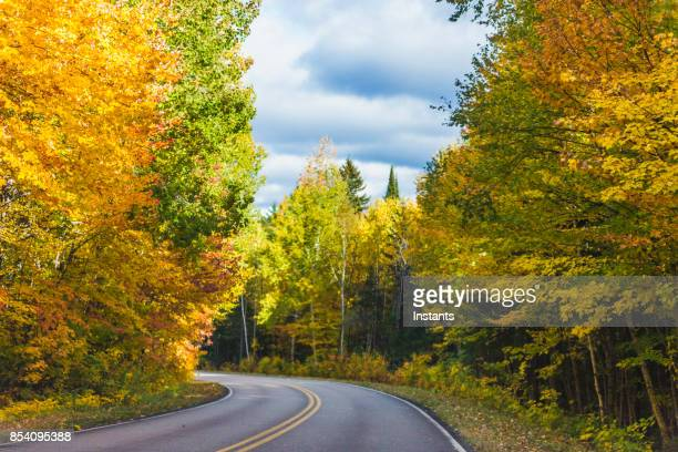 a view of the road in québec la mauricie national park, canada. - shawinigan stock pictures, royalty-free photos & images