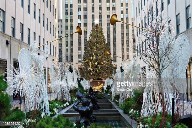 View of the Rockefeller Center Christmas Tree through the Channel Gardens on December 3, 2020 in New York City. Many holiday events have been...
