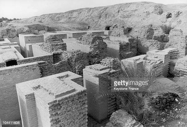 View of the ruins of the ancient constructions that made up Babylon. Located on the Euphrates, about 100 miles southeast of Baghdad, this city...
