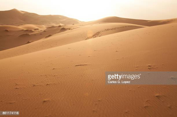 view of the sahara desert as the sun sets - sandig stock-fotos und bilder
