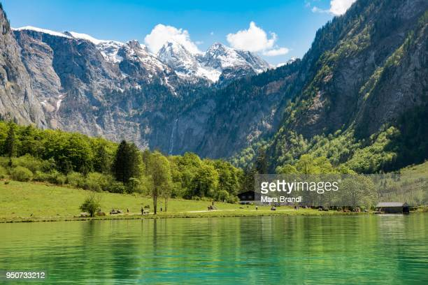 View of the Salet-Alm with Obersee, Koenigssee, Berchtesgadener Land, Upper Bavaria, Bavaria, Germany