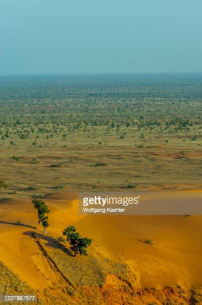 View of the savannah landscape in the Sahel zone showing the desertification near the Bandiagara Escarpment in the Dogon country in Mali, West Africa.