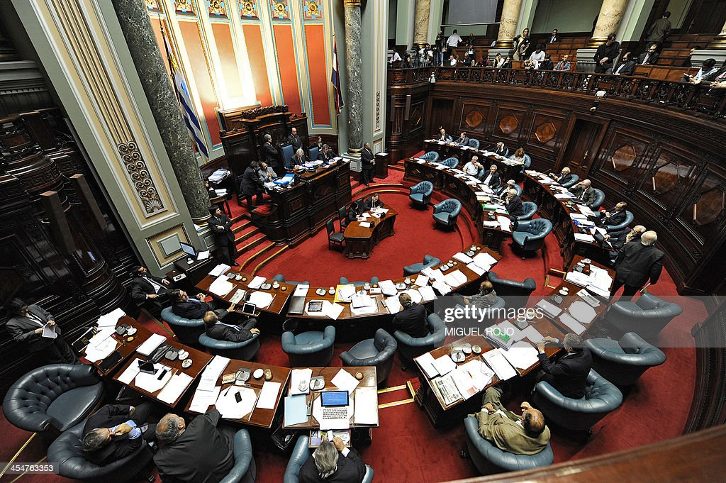 View of the Senators' Chamber at the Parliament building in Montevideo on December 10, 2013, as they discuss a law on the legalization of marijuana's cultivation and consumption. Uruguays parliament is to vote Tuesday a project that would make the country the first to legalize marijuana, an experiment that seeks to confront drug trafficking. The initiative launched by 78-year-old Uruguayan President Jose Mujica, a former revolutionary leader, would enable the production, distribution and sale of cannabis, self-cultivation and consumer clubs, all under state control. AFP PHOTO/ Miguel ROJO