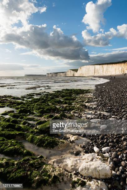a view of the seven sisters white cliffs - beauty in nature stock pictures, royalty-free photos & images