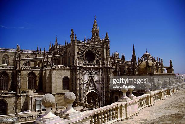 View of the Sevilla's cathedral