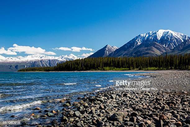 View of the shoreline of Kluane Lake in the Yukon Territory, Canada, summer