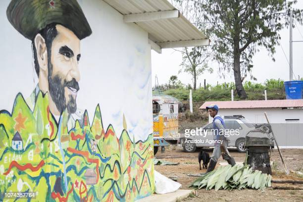 A view of the site where 120 exFarc fighters mostly indigenous and members of the Nasa community completed their training in production of hass...