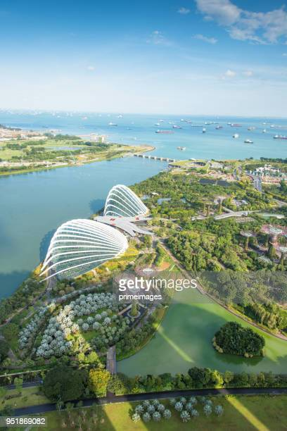 view of the skyline of singapore downtown cbd (ed) - marina bay singapore stock pictures, royalty-free photos & images